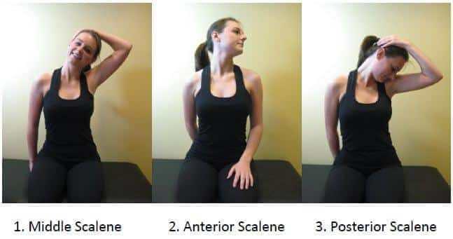 Scalene Stretches